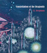 constellation of the dragonfly cover